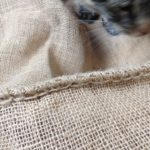 Burlap coffee sack and cat