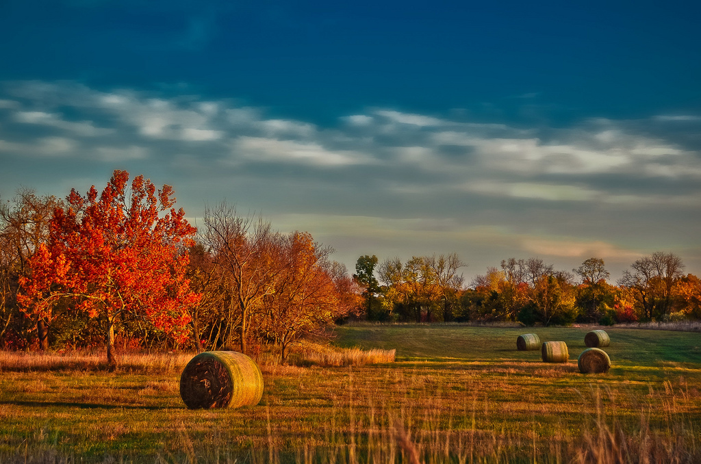 """Kansas Morning"" by Garet Gabriel"